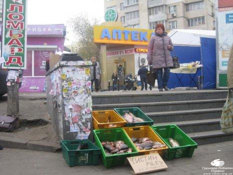 В Киеве проведен рейд по местам нелегальных продаж рыбы