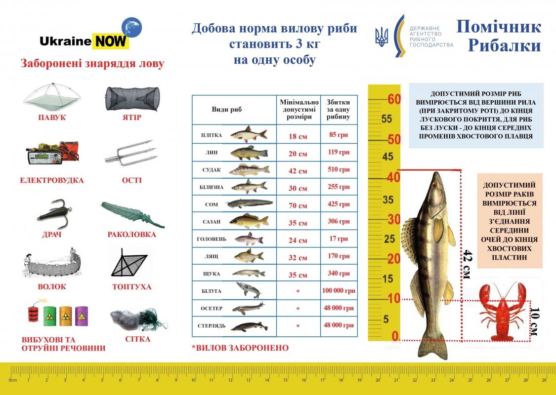 Добові норми вилову риби